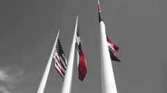 American And Texas Flag In Black And White Stock Footage