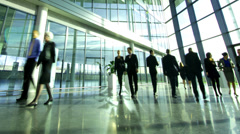 Time lapse of diverse business group in a large modern corporate building Stock Footage