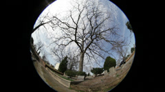 Fish Eye Time Lapse with tree in foreground Stock Footage