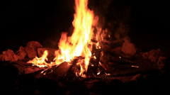 Bonfire burning trees at night Stock Footage