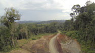 Stock Video Footage of Rising up from a new road cut into primary rainforest. 2.7K