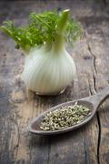 Fennel corm and wooden spoon of fennel seeds (Foeniculum vulgare) on wooden - stock photo