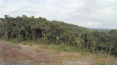 Tracking along the cut edge of primary rainforest in Ecuador Stock Footage