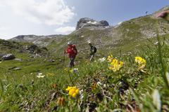 Austria, Vorarlberg, Biosphere Reserve Great Walser Valley, Upper Laguz Alpe in Stock Photos