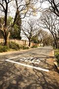 Etelä-Afrikka, Johannesburg, Street Parkview alueella Kuvituskuvat