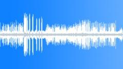 Vogelgezwitscher 002 Sound Effect