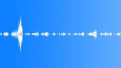 Vogelgezwitscher 01 Sound Effect