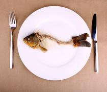 Complete bone of whole fish on plate, abstract Stock Photos