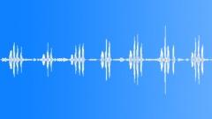 Birdsong. Chickadees. Forest Village. - sound effect