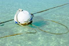 Rusty buoy in port water with ropes Stock Photos