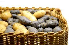 Potato basket - stock photo