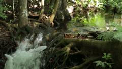 Pan of jungle waterfall and stream Stock Footage