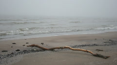Sea waves over sand beach untouched nature - stock footage