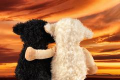 two cute stuffed animals enjoy the sunset - stock photo