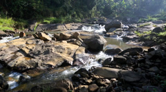 Whitewater flowing over rocks in small river Stock Footage