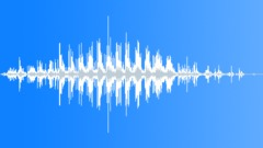 Maraca Rattlesnake Shake 2 - sound effect