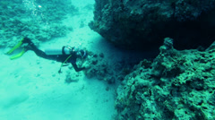 diver swims in a crevice of the reef - stock footage