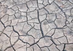 Dried ground the dry season Stock Photos