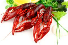 Three red crayfish with salad on white background Stock Photos