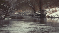 Stock Video Footage of Landscape winter forest and quiet during the winter river