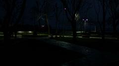 Park Night Time - stock footage
