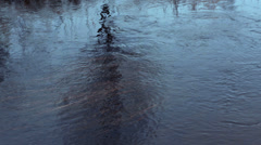 Melting snow Water flowing down the creek Stock Footage