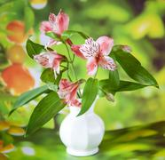 beautiful alstroemeria lily flowers in white vase - stock photo