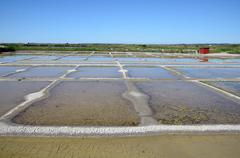 Salt pan at Guérande in France Stock Photos