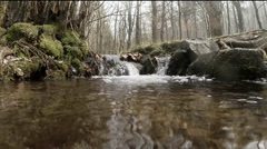 Frog view of a little spring in the cold season Stock Footage