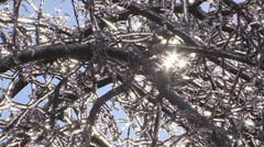 Ontario ice and freezing rain winter storm damage Stock Footage