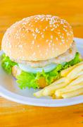 Hamburger and french fries , fast food Stock Photos