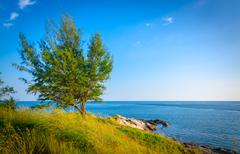 landscape of tree and sea coastline at koh samed island in thailand - stock photo