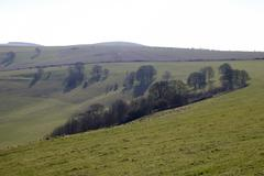 Stock Photo of The South Downs. Steyning. UK