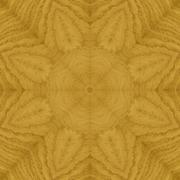Seamless pattern, veneer ash - stock illustration