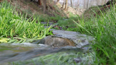 Water roll over rock in creek Stock Footage