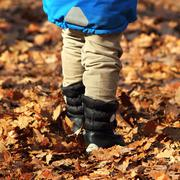 boy walking amongst faded leaves - stock photo
