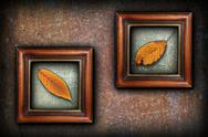 Stock Illustration of display of autumn symbols, beautiful golden cherry faded leaves