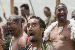 maori with frightening look - stock photo