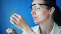 Biochemist examine plant in test tube in laboratory Stock Footage