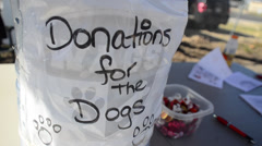 Donations for dogs dolly in Stock Footage