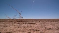 Australian Outback scene Stock Footage