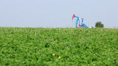 Oil pump jack on green field Stock Footage