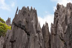 sharp limestone - stock photo
