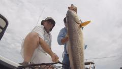 Redfish Saltwater Fishing Stock Footage