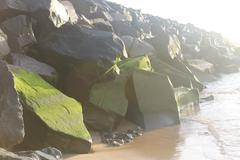 Algae on rocks at dawn Stock Photos