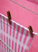 Washing line - stock photo