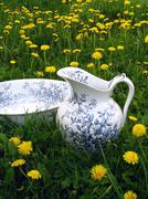 Classic wash basin and jug in meadow Stock Photos