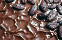 Chocolate icing and cocoa beans - stock photo