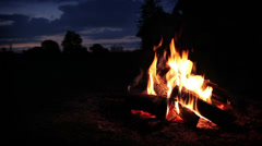 Campfire wide shot Stock Footage