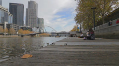 Cinematic shot on the southbank promenade and a curious yarra river goose 2 Stock Footage